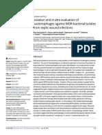 Aislamiento y Evaluación in Vitro de Bacteriófagos Contra Aislados Bacterianos MDR de Infecciones de Heridas Sépticas.