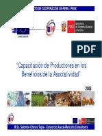Curso Asociatividad I - Asociatividad 20080917.pdf