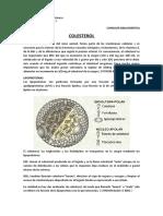 COLESTEROL CONSULTA.docx