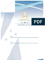 Lineamientos JNV-D 2017 -PAI Versiòn FINAL 17 de marzo.doc