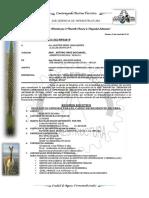 Informe Nº 304 a Gerencia Requerimiento de Reisdente de Obra.puente