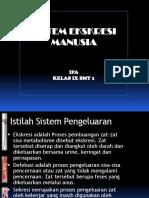 Sistem Ekskresi Manusia Kls 9