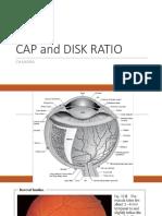 Cap and Disk Rasio