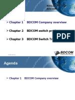 BD2524 Media Converter