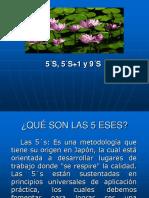 Programa 5 ESES (5 S)