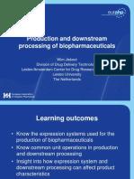 Production & Downstream Processing Jiskoot