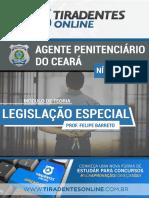 LEGISLACAO ESPECIAL - FELIPEBARRETO_2.pdf