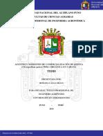 TESIS COMERCIALIZACIÓN DE QUINUA