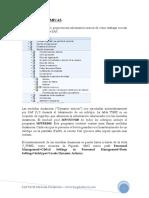 medidas dinamicas SAP