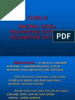 CURS IV