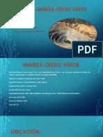 SOCIEDA MINERA CERRO VERDE.pptx