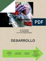 1. Desarrollo SNC y Fetal 2016 (1) (1)