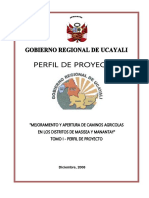 Proyecto Camino Agricola Masisea 8