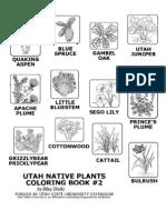 Coloring Book 2 of Utah Native Plants