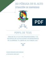 Perfil de Tesis Cultura Organizacional