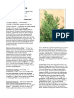 October 2006 Manzanita Native Plant Society Newsletter