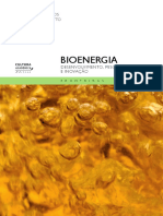 Bioenergia-DIGITAL.pdf