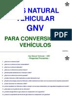 250896551-Gas-Natural-Vehicular-Gnv.pdf