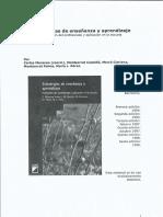 Estrategias de Enseñanza y Aprendizaje - Didactica II