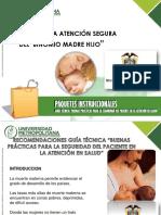 Atencion Segura Gestante Recien Nacido (1)