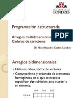 108_PE_C6-Arreglos_