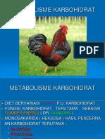 Metabolisme Kh 10