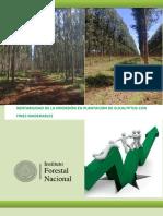 Rentabilidad de La Inversion Forestal 220414
