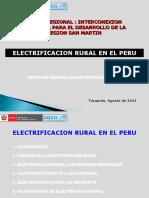 Foro Electricidad San Martin 2011_N_Garcia