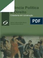 KNOERR Ciencia Politica e Direito