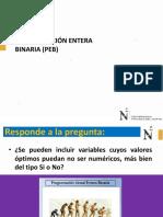 PE Binaria1
