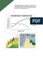 Como Afecta La Altutud en La Fotosintesis de Las Plantas c3