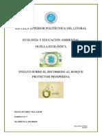 275769817-Ensayo-Bosque-Protector-Prosperina.docx