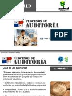 procesosdeauditora-101112141308-phpapp01.ppt