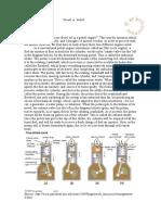 Diesel-vs.-Petrol.pdf