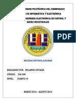 INSTRUCCIONES RISC.docx