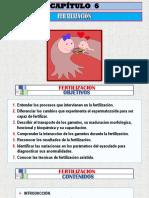 (6) 1a FERTILIZACIÓN- Arteaga M.  Modif..pptx