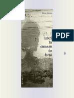 iberneaiubiri.pdf