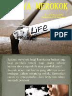 Penyuluhan Promkes Bahaya Merokok_carmelia