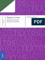 Álgebra Lineal; Apuntes De Teoría Y Ejercicios Resueltos - José Manuel Salazar.pdf