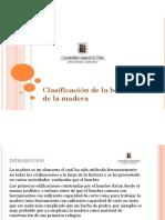 Clase Nº1 - Clasificacion de La Botanica de La Madera