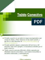 Tejido_Conectivo