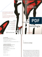 216282038-Simmel-Questoes-Fundamentais-Da-Sociologia.pdf