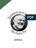 Apostilas Seminário - Módulo I
