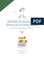 Informe Sistema de Informacion Gerencial
