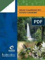 Informe_Geoambiental_Carabobo.pdf