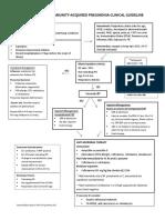 CAP flow sheet pdf 62015.pdf