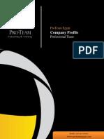 ProTeam Company Profile (ProTeam, 2010 )