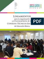 LINEAMIENTOS CTE´S -2016-2017