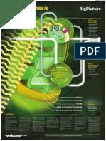 Poster Print Post-proof