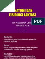 anatomi payud